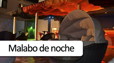 Boton-Malabo-de-noche